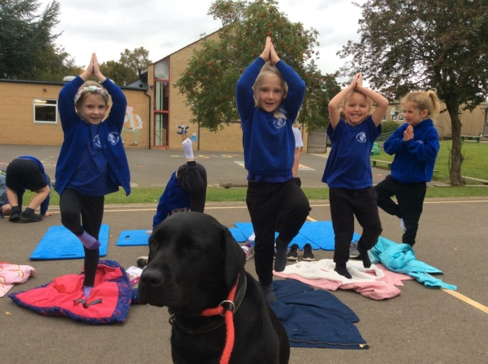 Enjoying yoga at lunchtime with our School Dog Hero