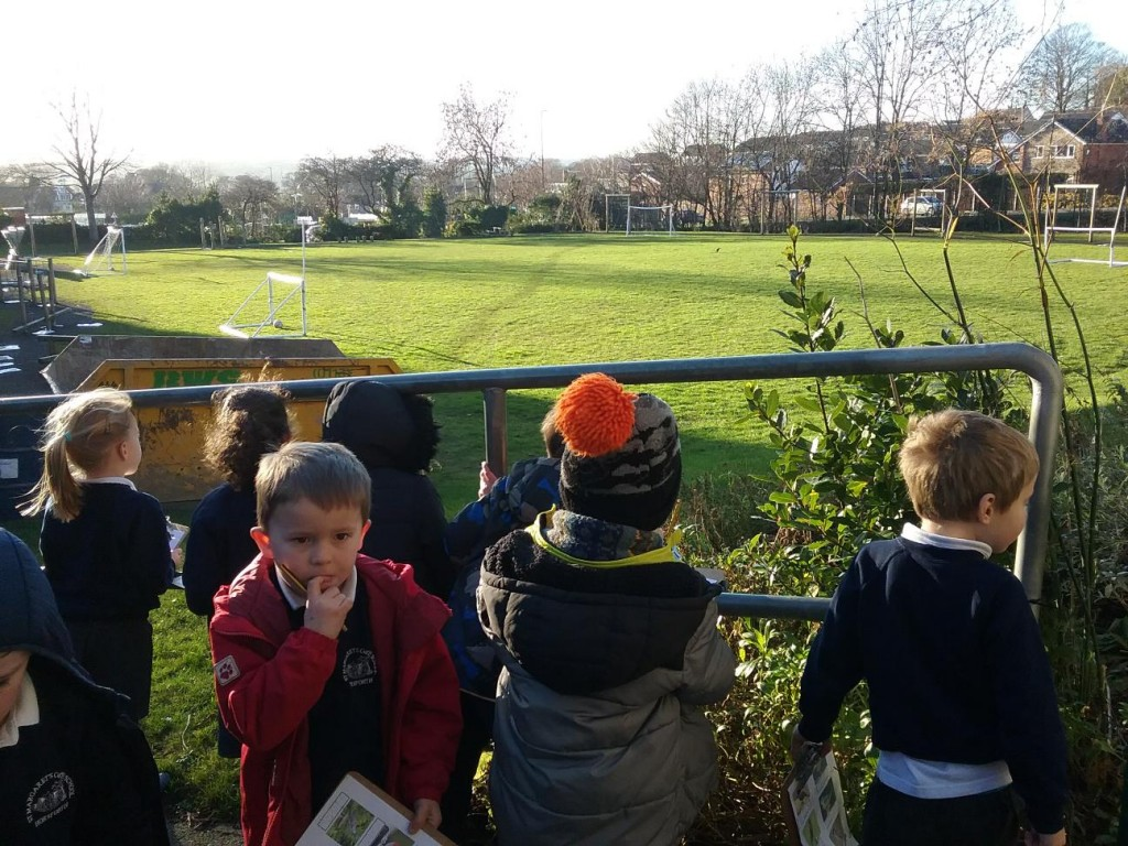 Big Schools Birdwatch!